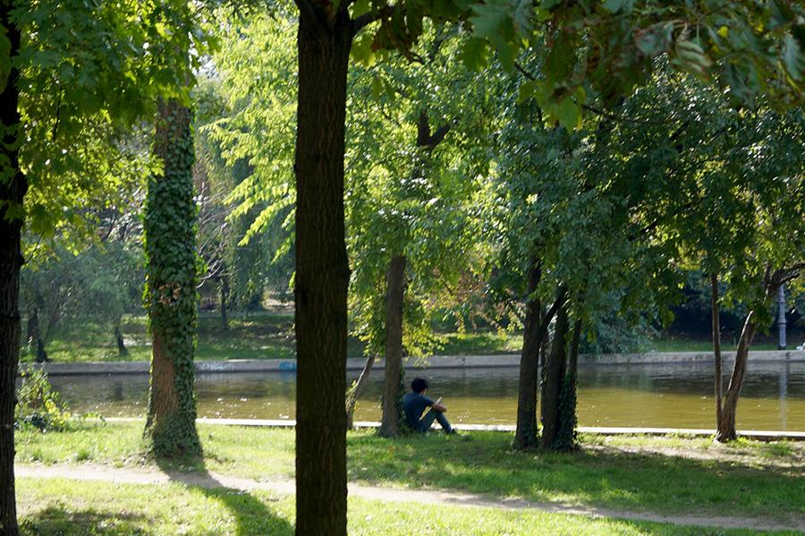 efekt-kontrastu-bukareszt-park-ksiazka