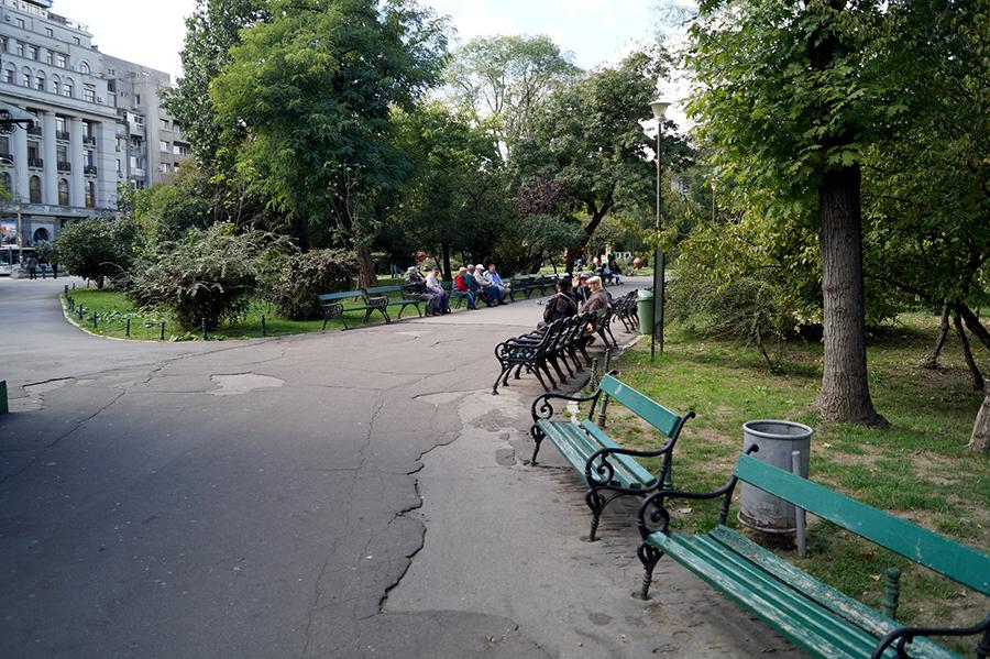 efekt-kontrastu-bukareszt-park-lawki